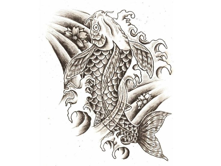 28 best faith koi fish tattoo images on pinterest fish for Japanese koi fish drawing