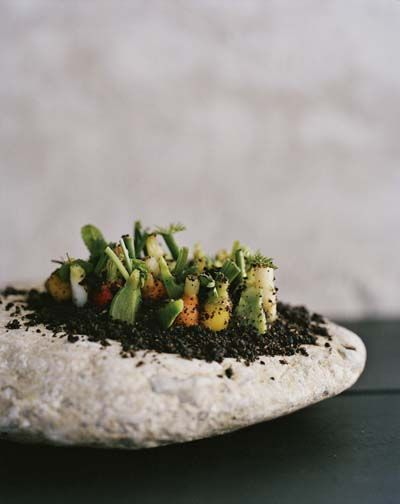 """""""Vegetable Field"""" The """"soil"""" is made of malt flour and hazelnut flour. It's all the fun of foraging without the work. The joke is reminiscent of the """"Oysters and Pearls"""" and """"Macaroni and Cheese"""" cheekiness of Redzepi's former boss Thomas Keller."""