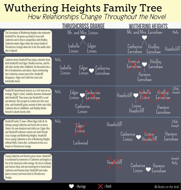 an analysis of the character intricate and engaging in wuthering heights by emily bronte Wuthering heights emily bronte's wuthering heights is a novel full of controversial topics such as love, revenge, and betrayal bronte wrote the novel in the form of framed narration, meaning there is a story within a story throughout the novel.