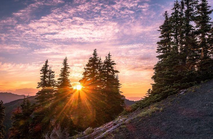 Góry, Świerki, Zachód, Słońca, Promienie