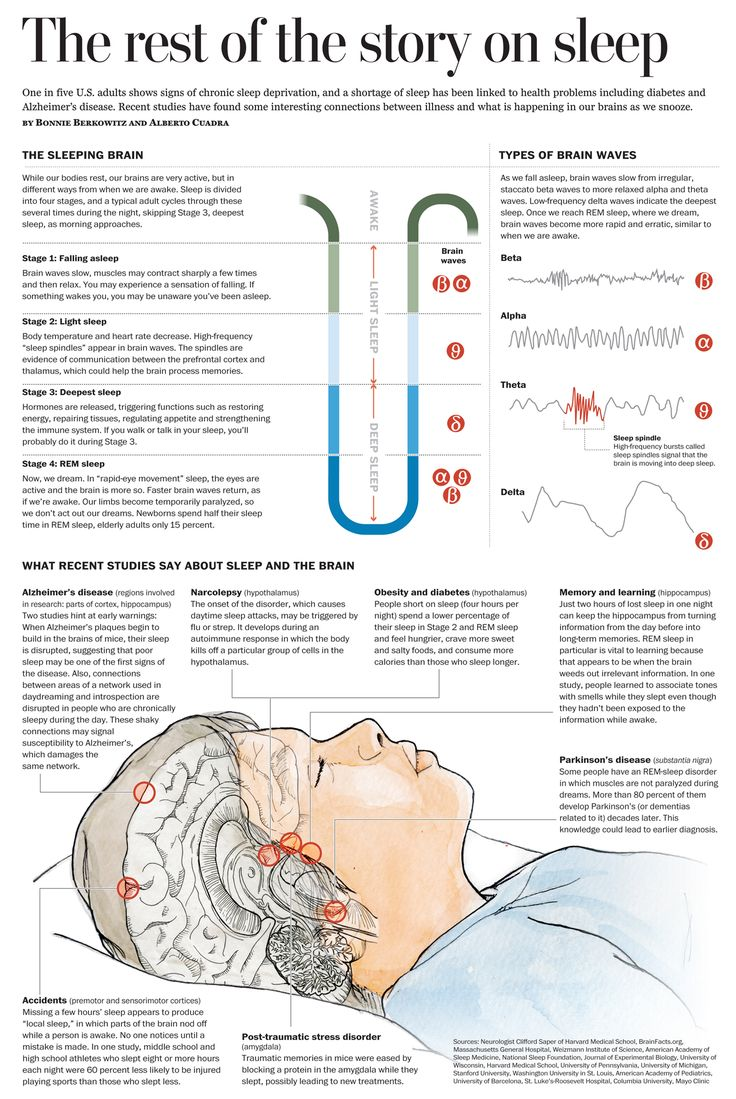 Graphic for the Health and Science Section explaining how sleep disorders affect specific areas of the brain. Watercolours, ink pen and Adobe Illustrator for vector work and to assemble all elements.
