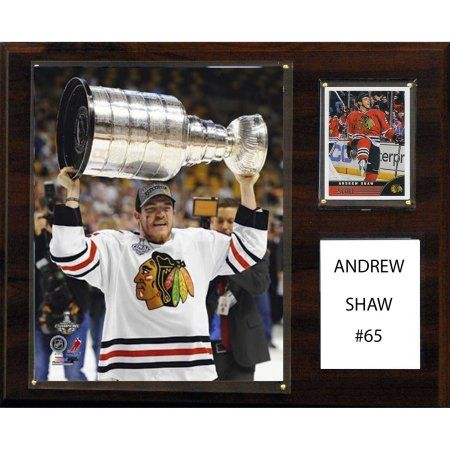 C Collectables NHL 12x15 Andrew Shaw Chicago Blackhawks Player Plaque
