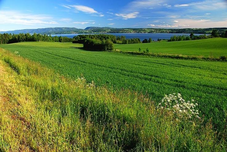 Beautiful Hedmark and lake Mjøsa, Ringsaker, Norway