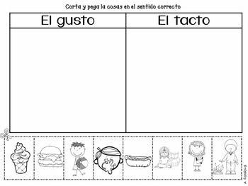 FIVE SENSES IN SPANISH - TeachersPayTeachers.com