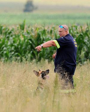 A total of 67 people have been murdered on farms across South Africa in 2014, AfriForum says.