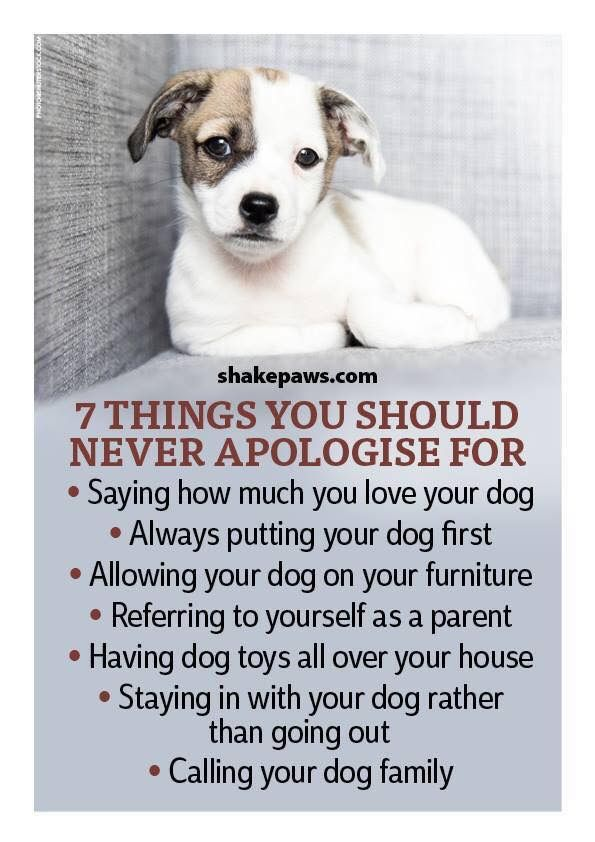I would never apologize for any of these things....