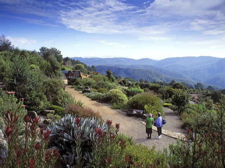 Romantic holidays in scenic Blue Mountains. http://www.ozehols.com.au/blog/new-south-wales/blue-mountains-for-romantic-getaways-scenery-adventure/ #bluemountains #bluemountainholidays #visitbluemountains