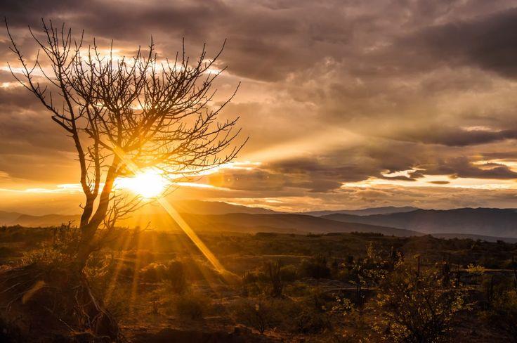 Desierto Tatacoa Colombia....Die Tatacoa-Wüste in Kolumbien ist ein spektakuäres Highlight und liegt zwischen bogota und San Augustin #tatacoa #colombia #sunset
