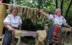Slovakia , processing of flax