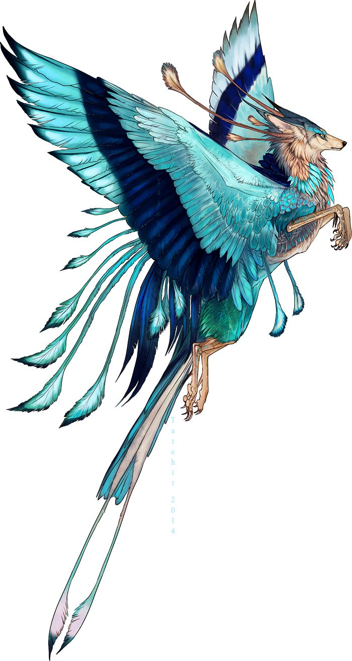 I have been thinking I would like alternate animal types. just gives my world a little more bite -Z Indian Roller Feonix adopt by Tatchit