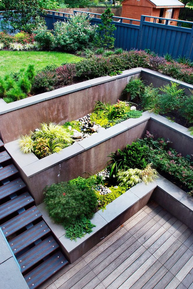 Wood decking, contrasting stairs, concrete terraced wall filled with herbs.