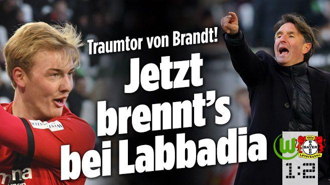 VfL Wolfsburg gegen Bayer Leverkusen - Bild.de