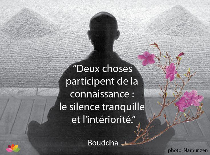 boudhha citation