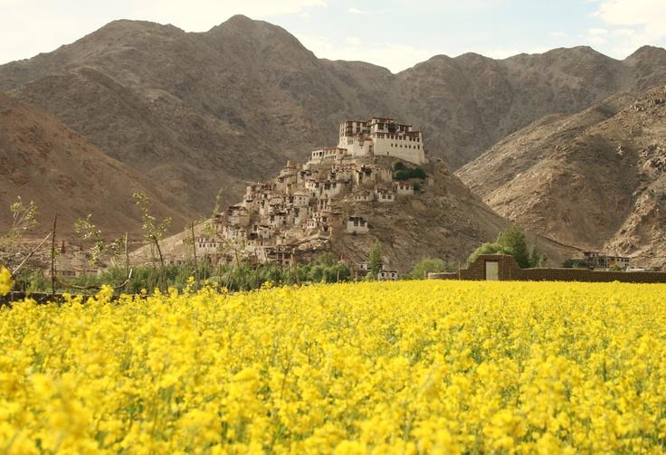 Chemrey Monastery in July Chemrey Monastery mese di luglio