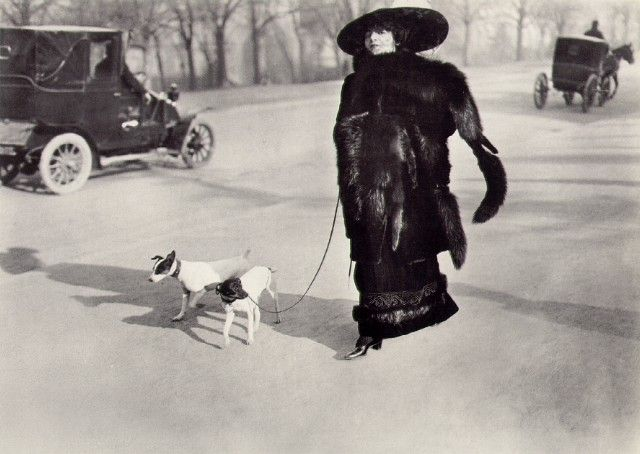 Vintage society lady with her dogs! Notice both the car AND horse carriage behind her, a time of big changes! Jacques-Henri Lartigue photo.