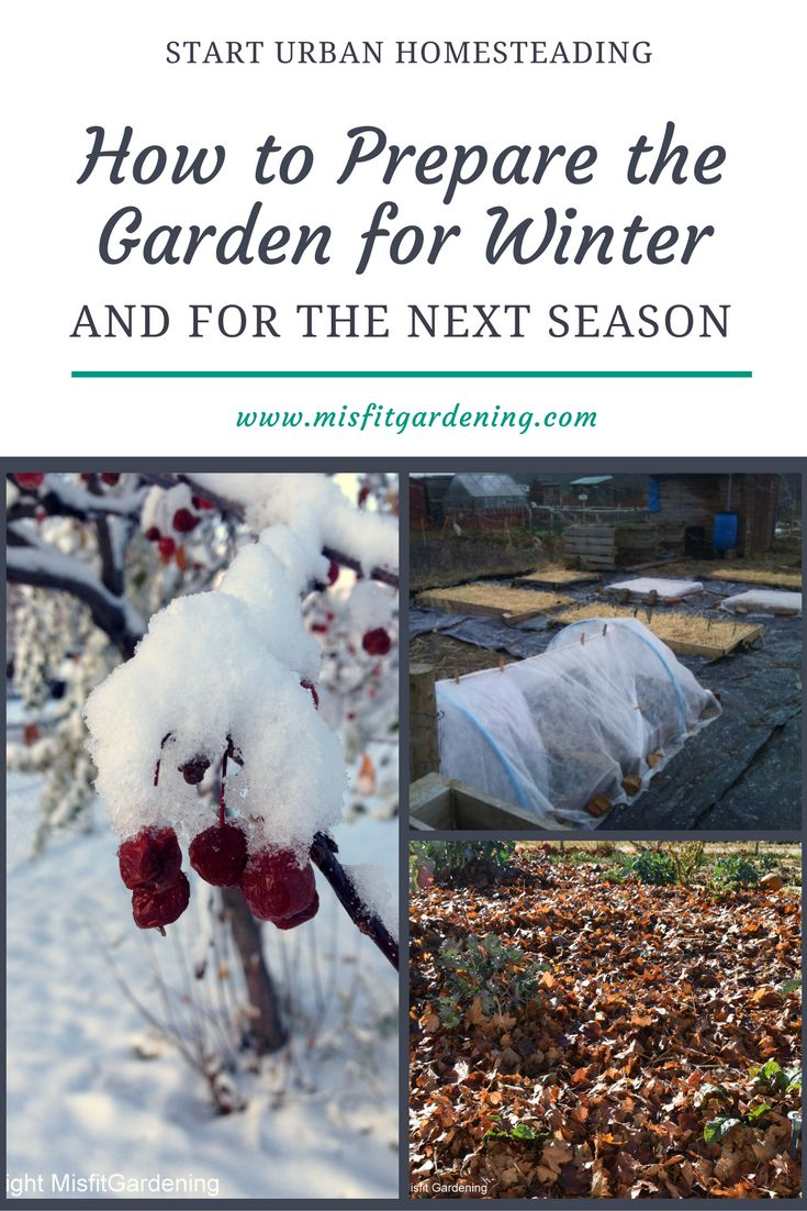 49 best homesteading weather tips images on pinterest survival