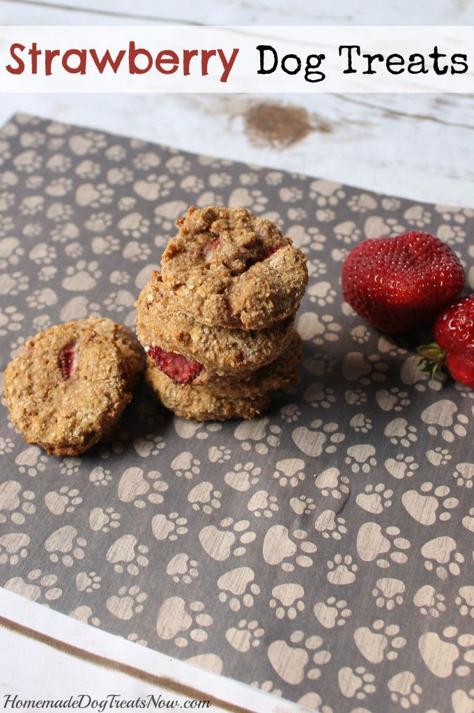 Strawberry Dog Treats - Homemade Dog Treats