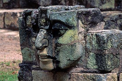 Названа причина исчезновения майя: История: Наука и техника: Lenta.ru