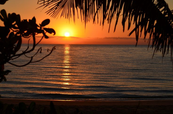 Who doesn't love the mornings in Palm Cove? It's our favourite part of the day....enjoy a quiet contemplative walk along the beach and just drink in the sheer beauty of it all, followed by the most delicious coffee at one of the many beachfront cafes. Does it really get any better?