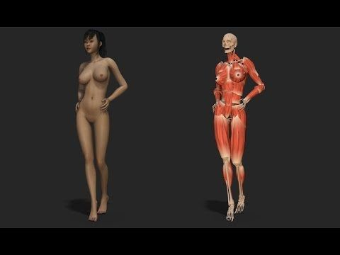 TD Facial muscle Rigging Demo
