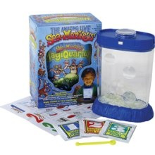 ALL my students - Kinders, 1st, and 2nd graders - would love this!  Easy to start, easy to care for... Sea-Monkeys! :)