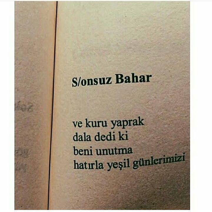 I wonder.. a lot... — S/onsuz Bahar Ve kuru yaprak dala dedi ki beni...