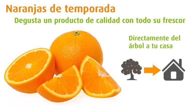http://www.premiummediterranean.com/es/  Comprar naranjas  Comprar naranjas y mandarinas de temporada, recién cogidas del árbol a su mesa.  #premiummediterranean, #fruta, #verduras, #alimentación, #hosteleria, #tienda