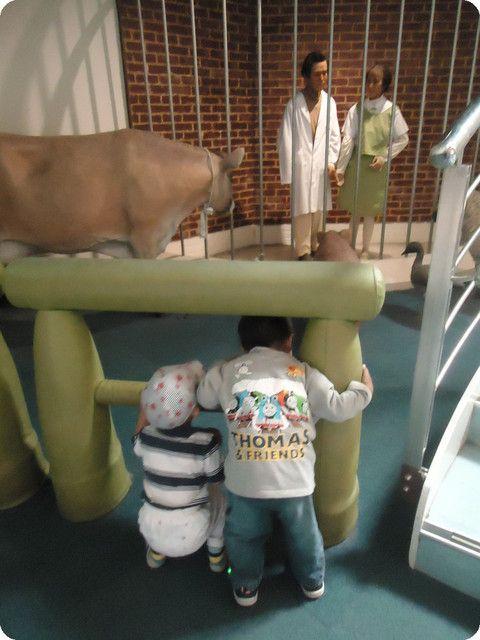 讓孩子學習身體構造多奇妙!秀傳醫學博物館 - 景點 - 親子就醬玩