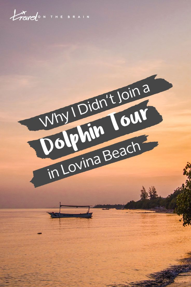 Why I Didn't Join a Lovina Dolphin Tour