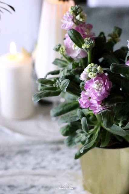 La mia barbottina: Simple Elegant Easter Table