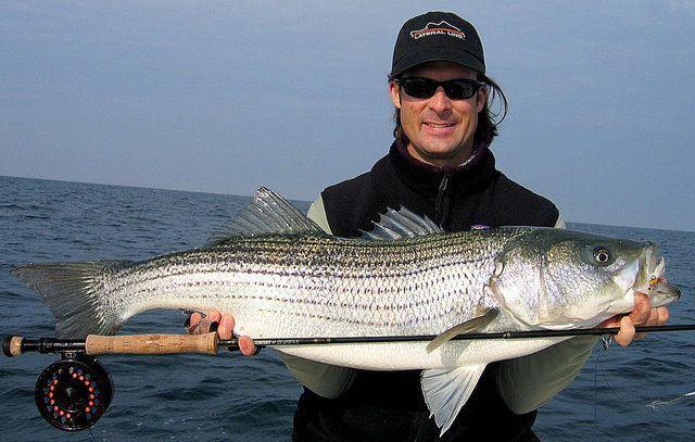 Lake amistad fishing guide