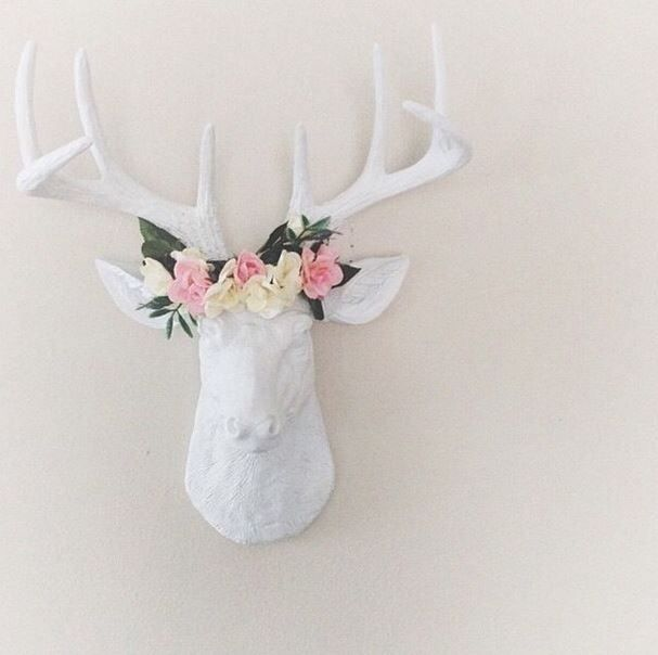 Stag Deer Deer And Faux Taxidermy On Pinterest