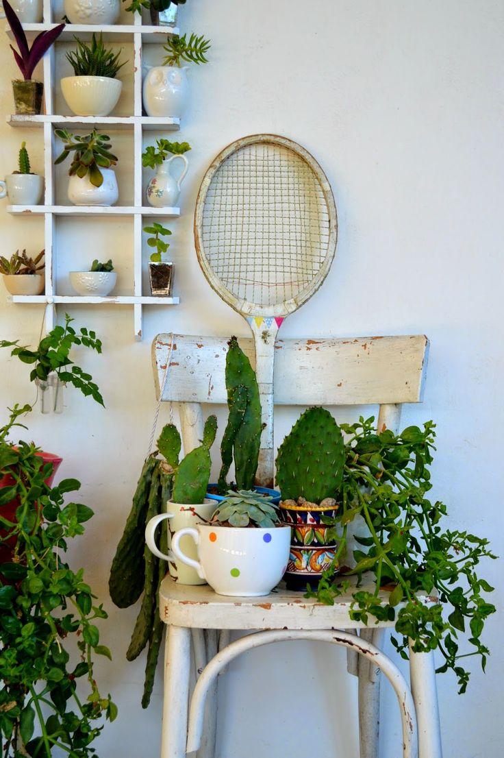 Urban Jungle Bloggers: My Plant Gang by @blogacavola
