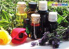 learning about essential oils...