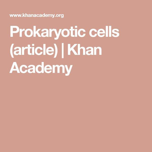 Prokaryotic cells (article) | Khan Academy