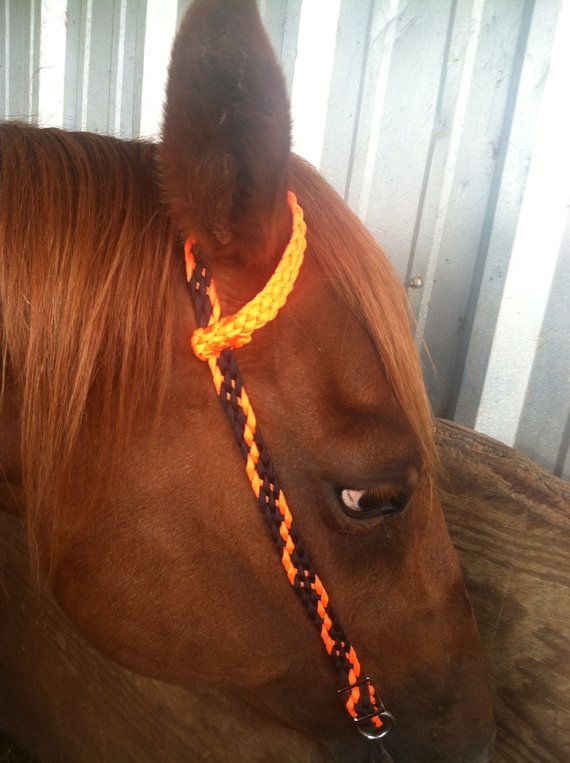 17 best images about paracord horse tack on pinterest for Paracord horse bridle