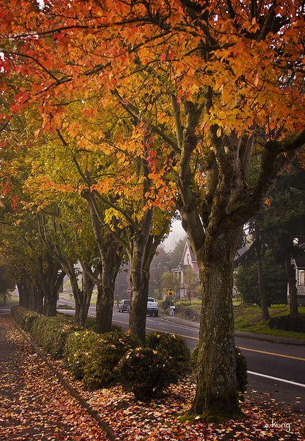 Lowell Park, Everett, Washington; photo by .sking5000