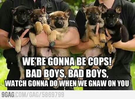 Cops....