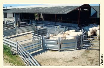 Dossier spécial : Sommet de l'Elevage : 1. Matériel d'élevage