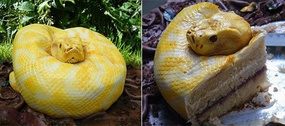 you can't even imagine how much i adore this cake!  wow!: Crazy Real, Cakes Ideas, Cakes Art, Awesome Cakes, Creepy Cakes, Cakes Cakes, Snakes Cakes, Cakes Galor, Parties Ideas