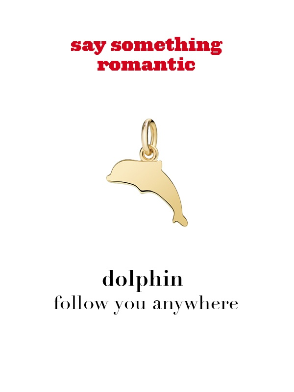 Dodo charm: dolphin - follow you anywhere