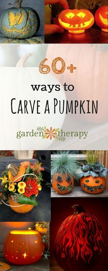 60 ways to carve a pumpkin halloween pumpkinshalloween decorationshalloween