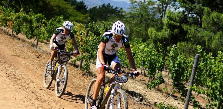 Hills, sweat and gears in the winelands - try one of our active Cape winelands adventures