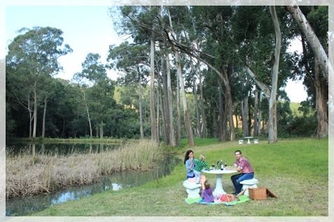 Picnic at a special spot at the dam. Ingeli Forest Lodge - www.ingeliforestlodge.com