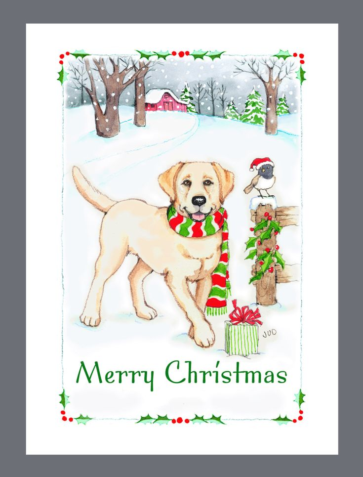 Yellow Labrador Retriever Dog Christmas Cards Box of 16 Cards and Envelopes by Judzart on Etsy https://www.etsy.com/listing/165589046/yellow-labrador-retriever-dog-christmas
