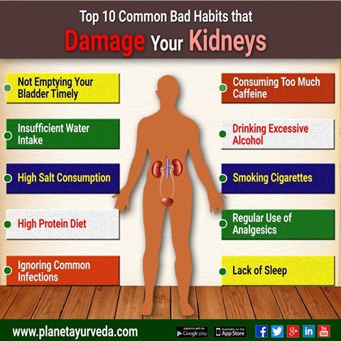Kidney bladder infection