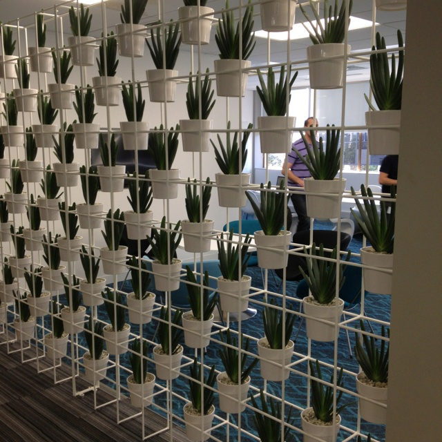 Greenair brings a new concept to office screening with plants! Designed, installed and maintained by Greenair!