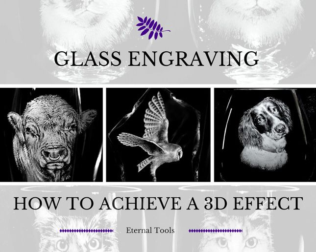 How to Achieve a 3D effect and add fine detail such as fur and feathers to your glass engraving using silicone polishers and diamond burrs. Alan Sinclair demonstrates the use of different tools to create a 3D effect to your glass engraving. The precise fur and feather detail Alan achieves on his glass engravings are down to his own technique, this article tells you  how you too can enhance your engravings with these helpful hints and tool tips.