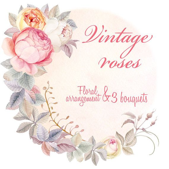 Vintage Rouse Flower Clipart Watercolour, Hand Painted Graphics, Bouquets…