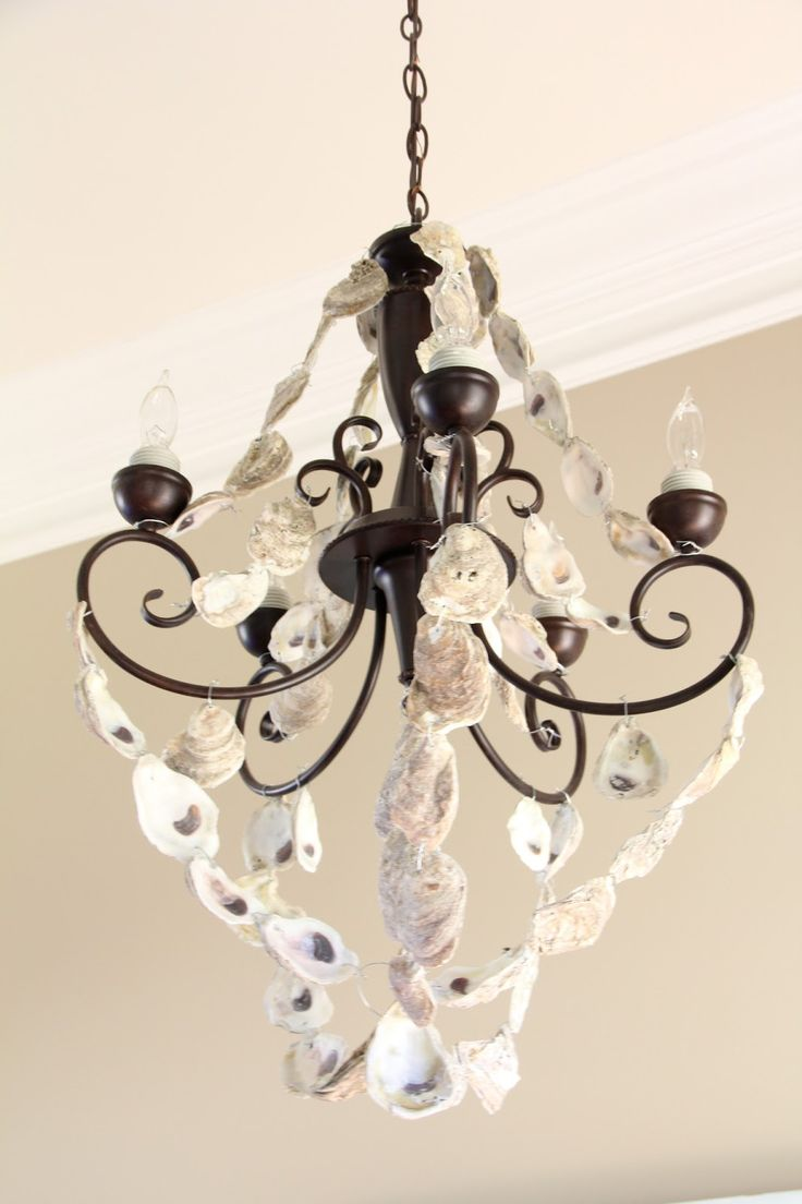 chandelier round s oyster home a shell dodson products